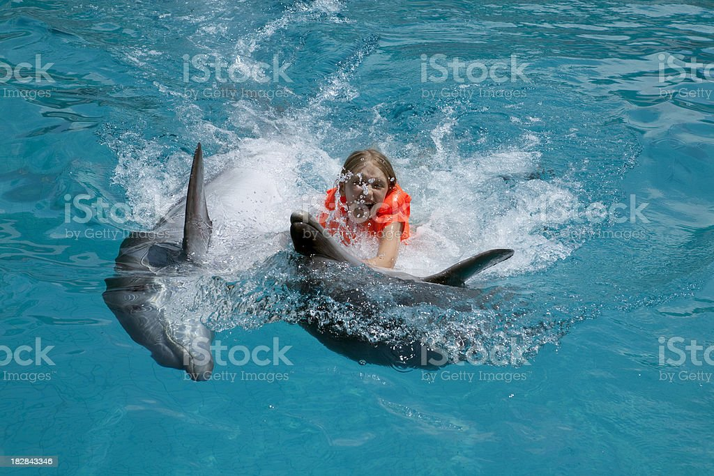 Happy Little Girl Riding two Dolphins in  Swimming Pool. stock photo
