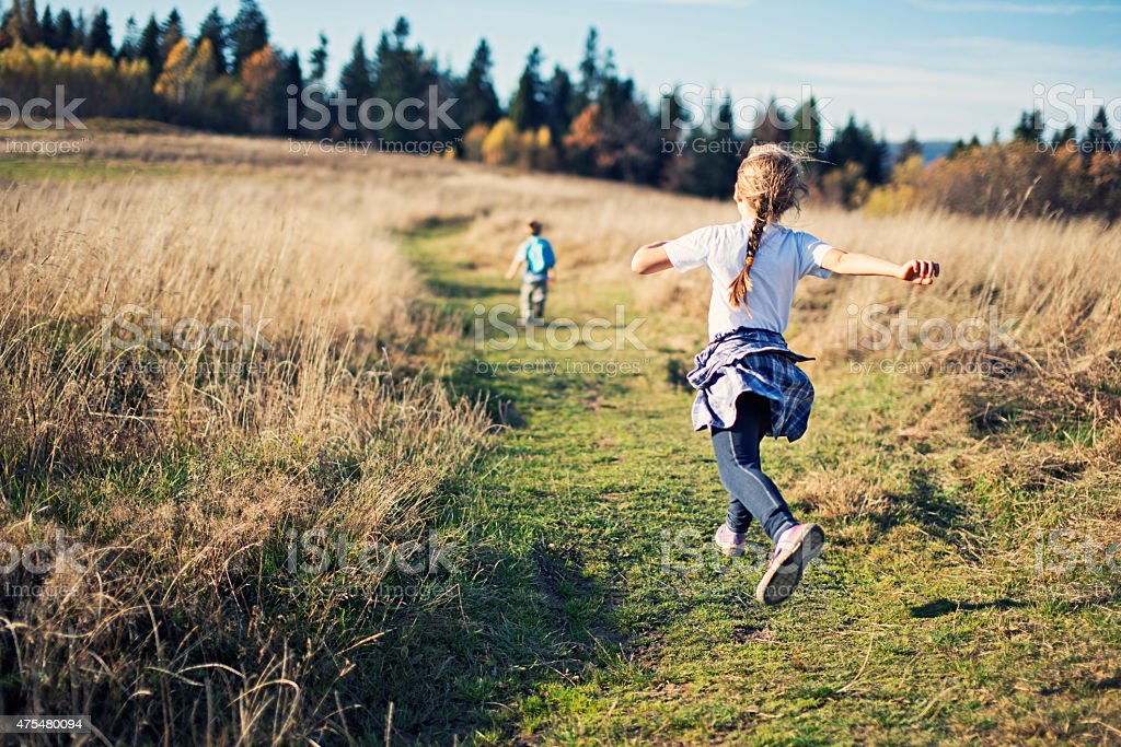Happy little kids hiking stock photo