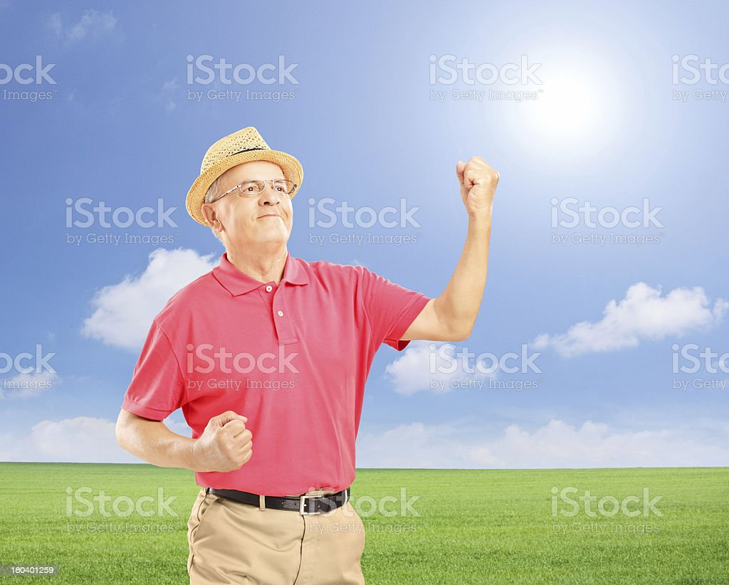 Happy man with raised hands gesturing happiness on a field royalty-free stock photo