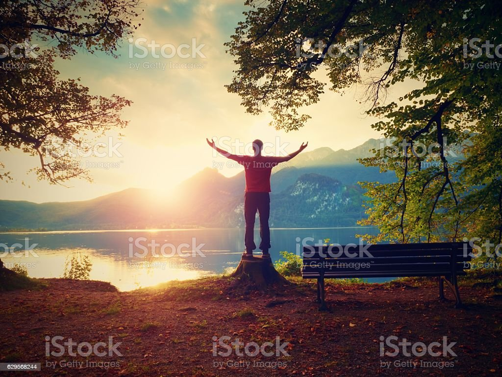 Happy man with rised arms,  red t-shirt stand on stump stock photo