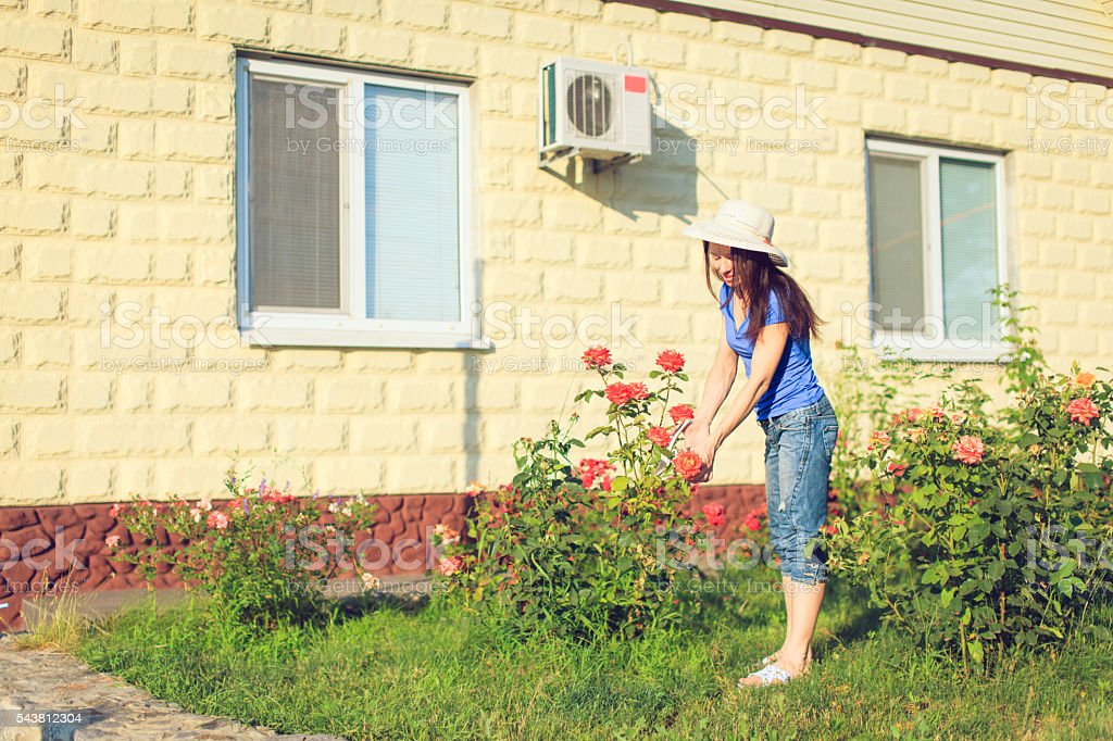 Happy mature woman taking care of her flowers in garden. stock photo
