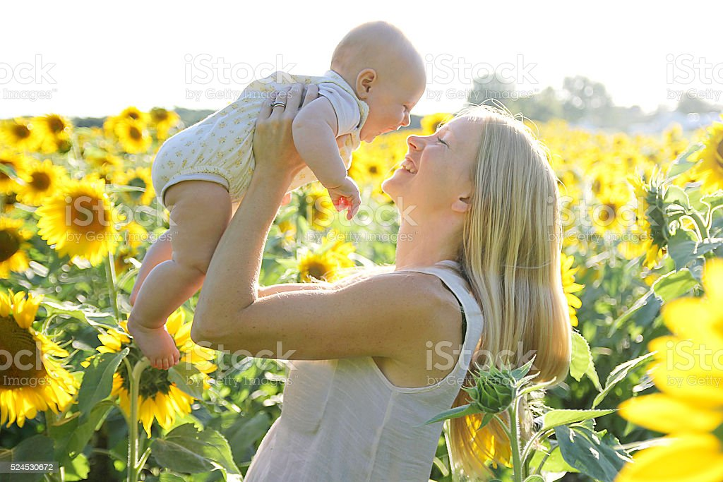 Happy Mother and Baby Daughter in Sunflower Field stock photo