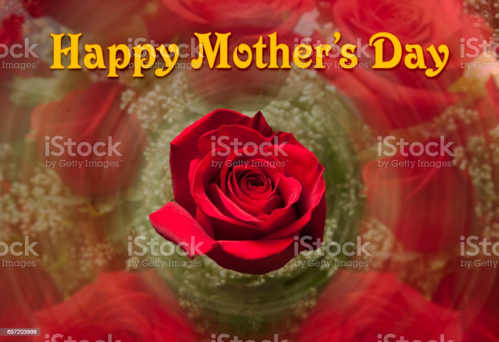 Happy Mothers Day background with red rose stock photo