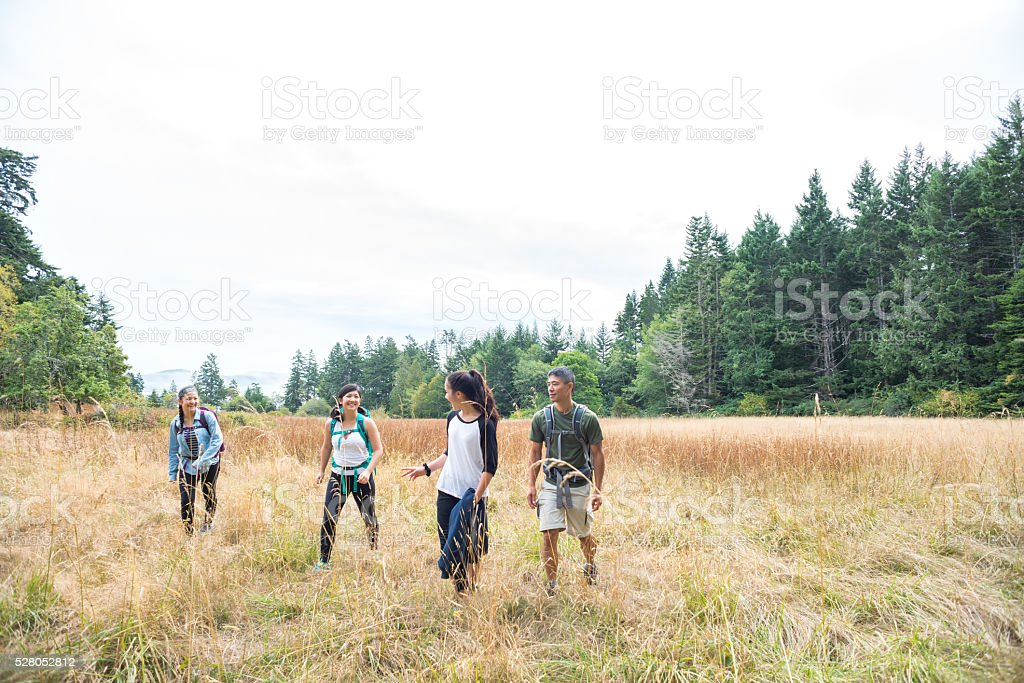 Happy Multi-Ethnic Family Hiking Through Grassy Meadow Surrounded by Forest stock photo