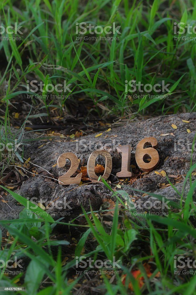 Happy New Year 2016 on grasses in the garden stock photo