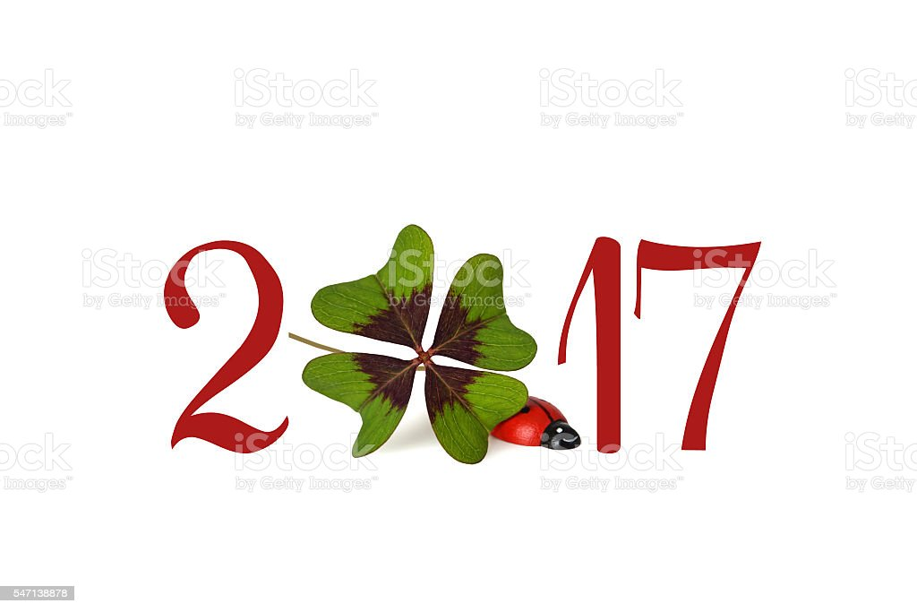 Happy New Year 2017, four leaf clover and ladybug stock photo