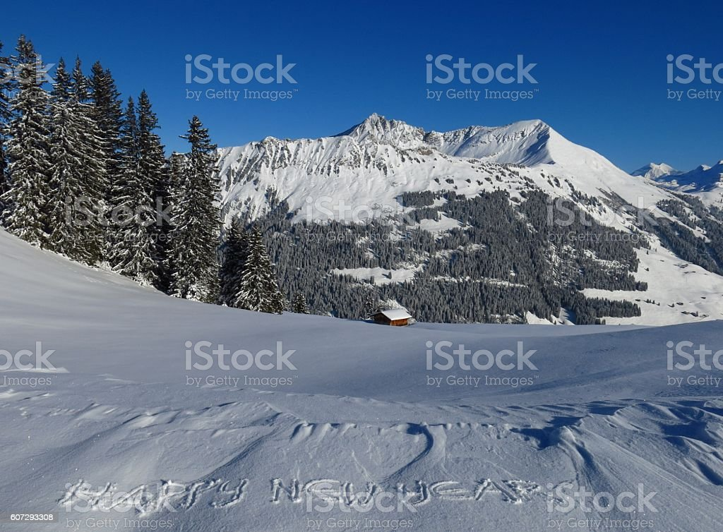 Happy new year wish engraved in snow stock photo