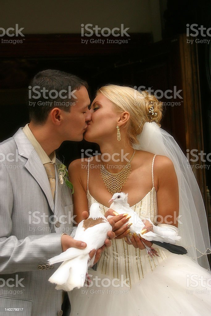 Happy newly-married couple royalty-free stock photo