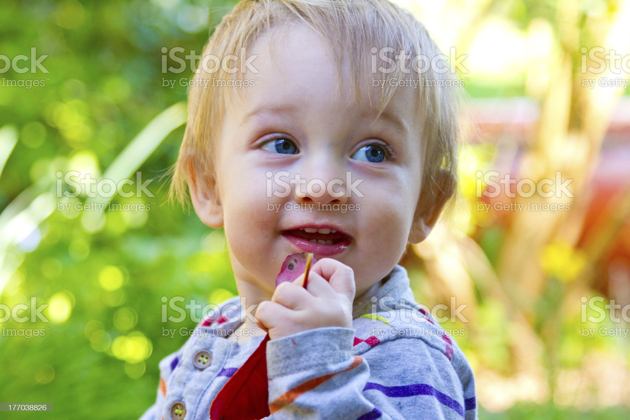 Happy One Year Old Playing royalty-free stock photo