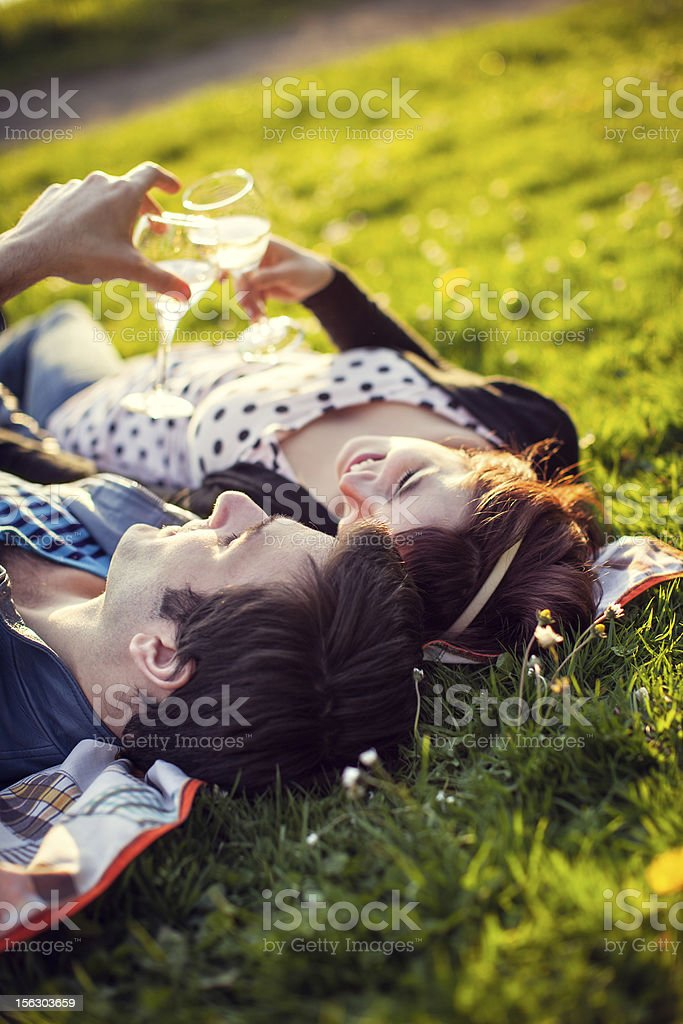 Happy Picnic Couple with Wine Glasses royalty-free stock photo