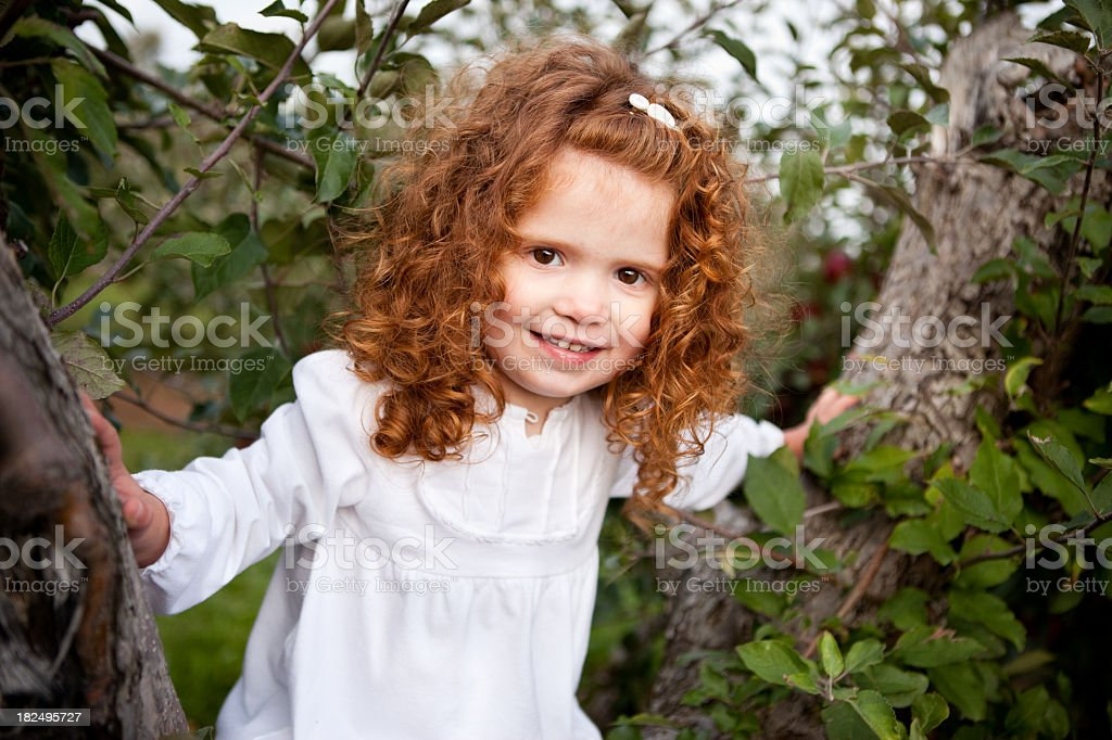 Happy Red-Haired Girl Sitting in Apple Tree at Orchard royalty-free stock photo