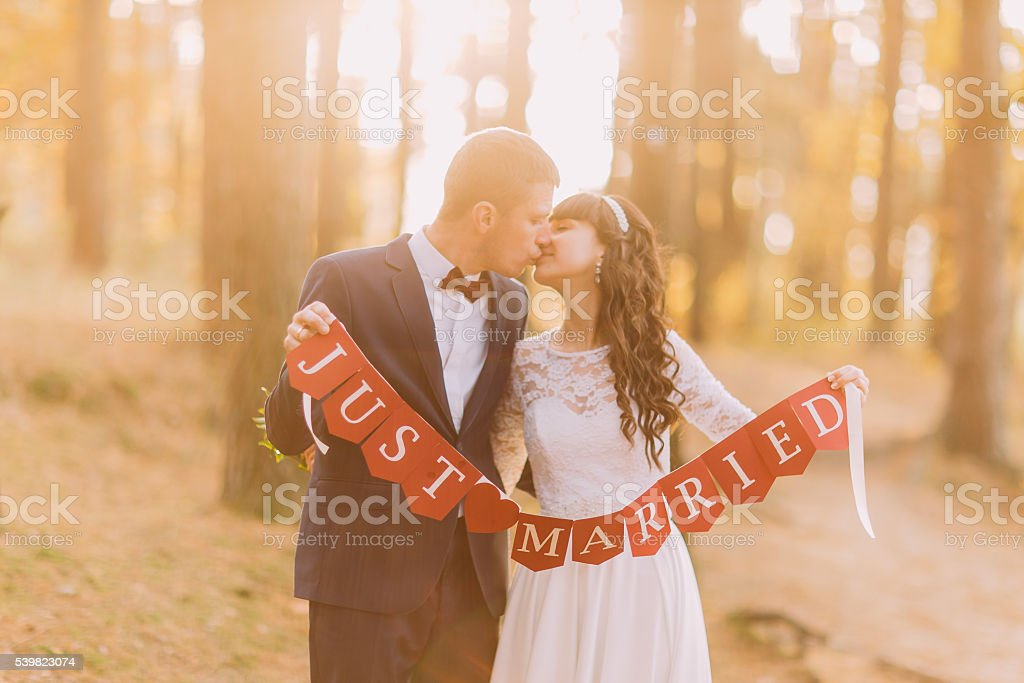Happy romantic groom and his charming new wife holding just stock photo
