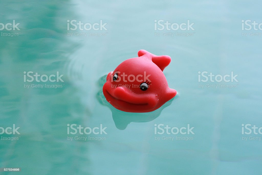 Happy rubber fish floating toy stock photo