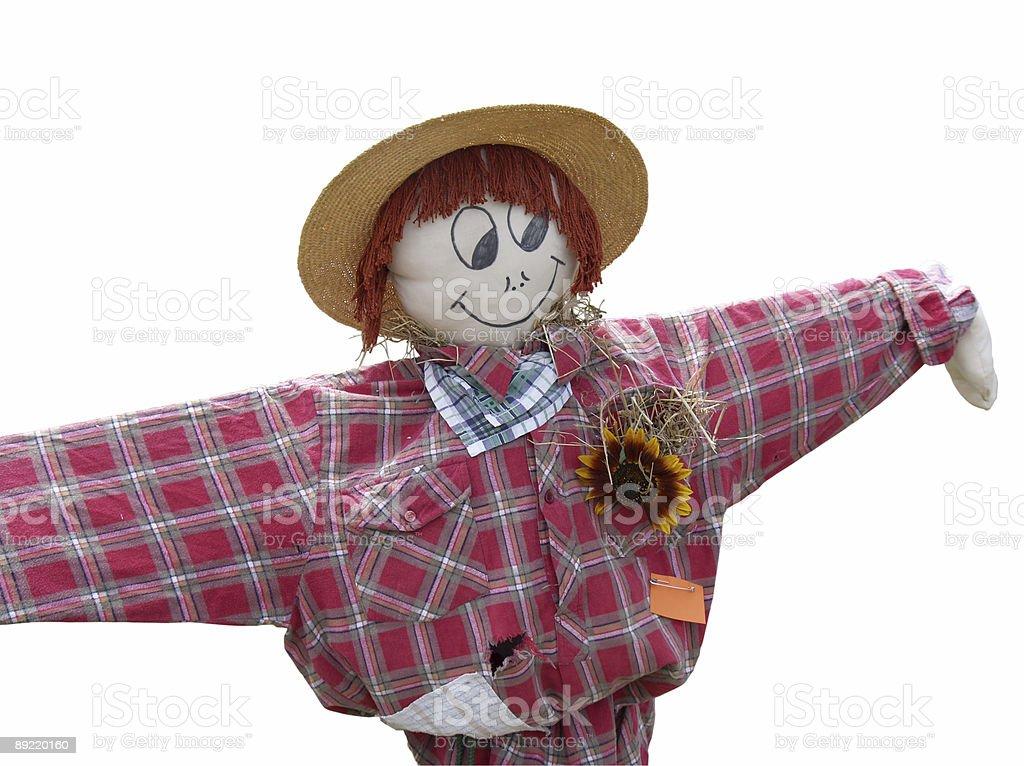 Happy Scarecrow royalty-free stock photo