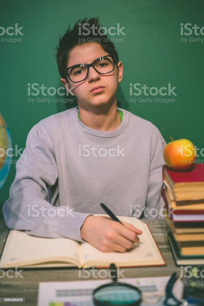 Happy schoolboy. stock photo