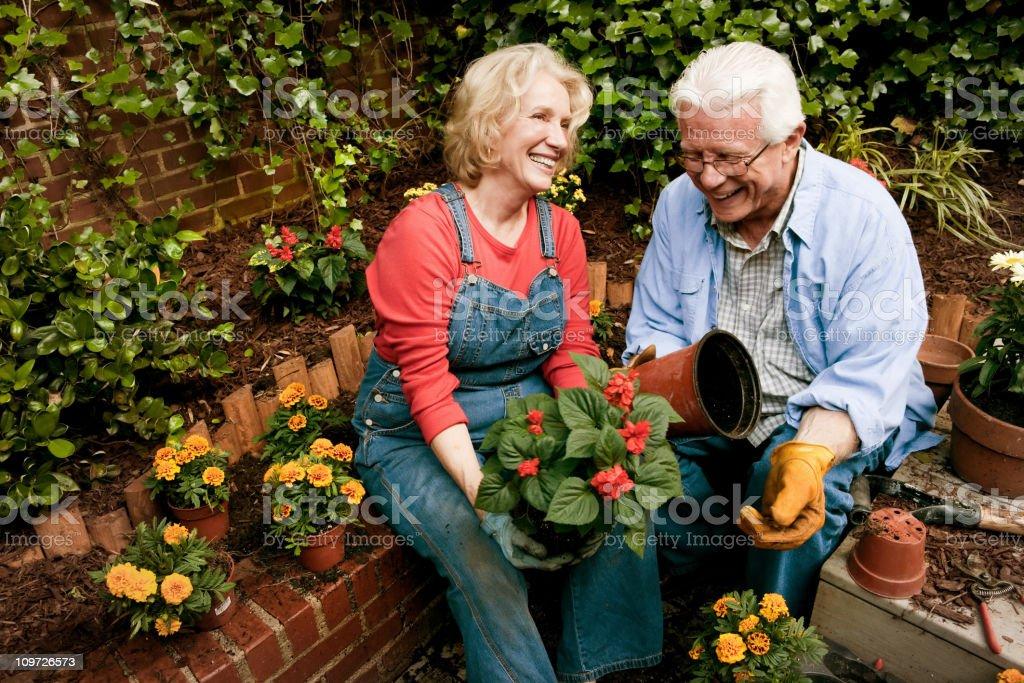 Happy Senion Garden Couple stock photo