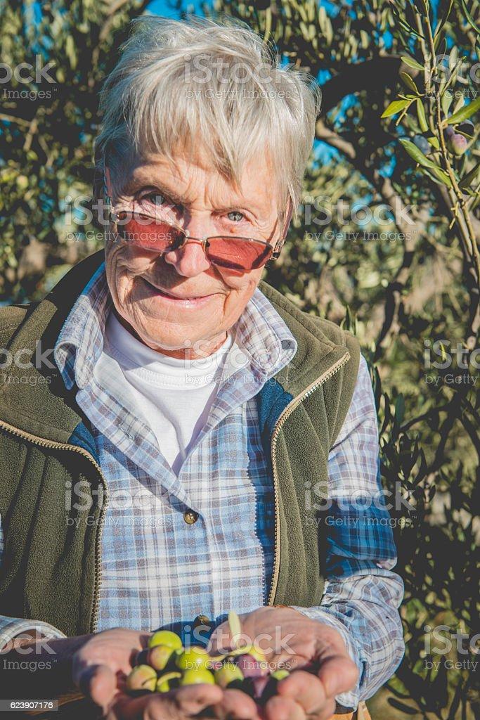 Happy Senior Caucasian Woman Holding Olives, Brac, Croatia, Europe stock photo