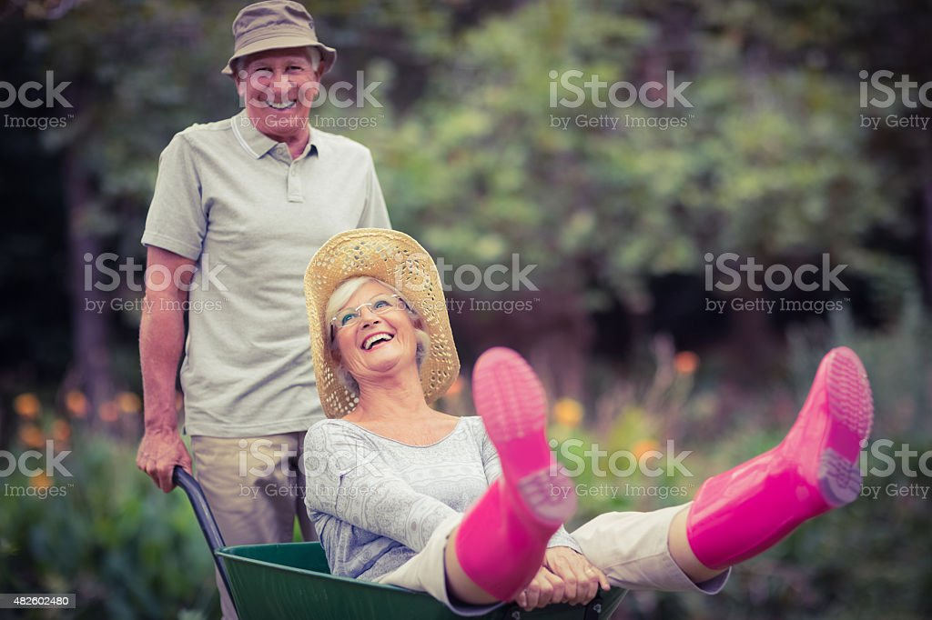 Happy senior couple playing with a wheelbarrow stock photo