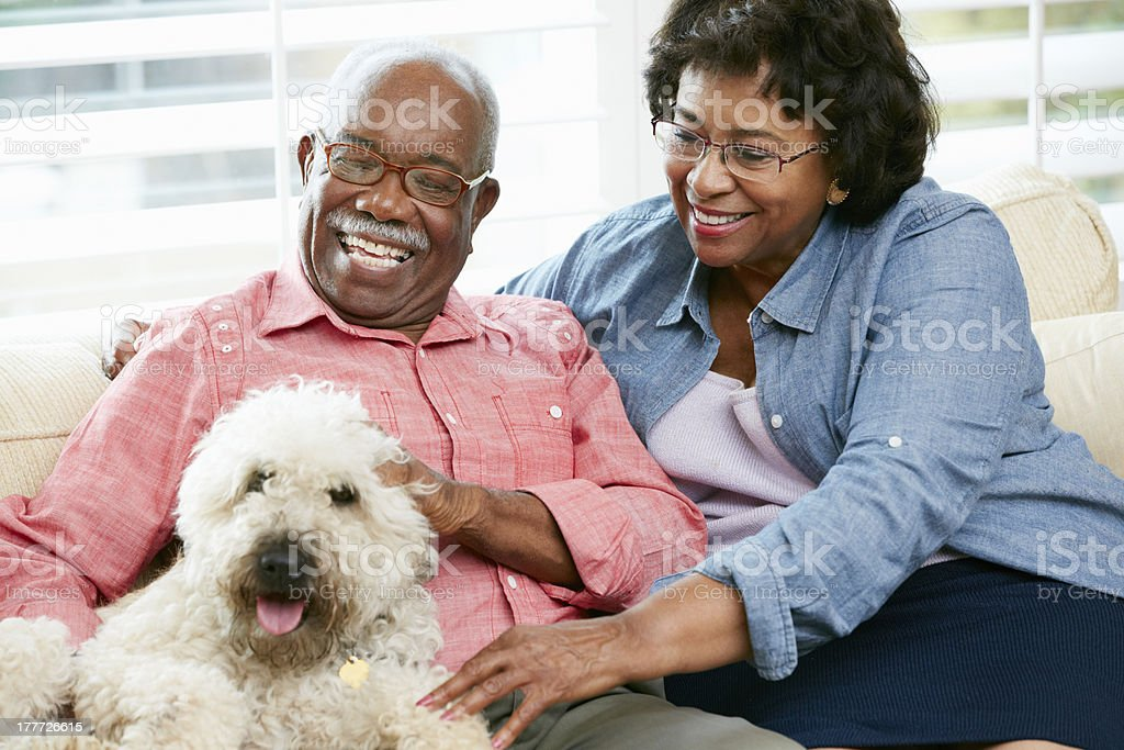 Happy senior couple with pet dog royalty-free stock photo