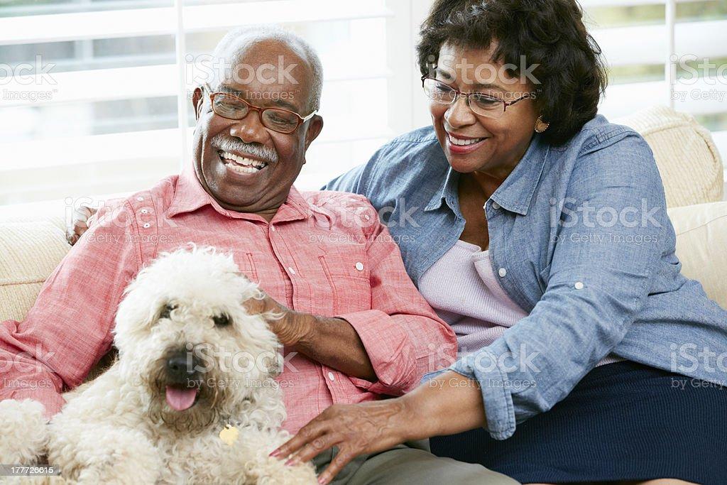 Happy senior couple with pet dog stock photo