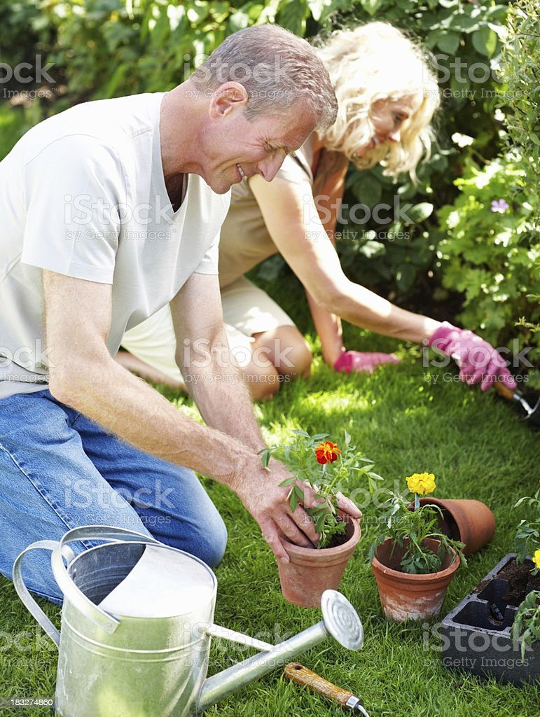 Happy senior man with woman working in the garden royalty-free stock photo