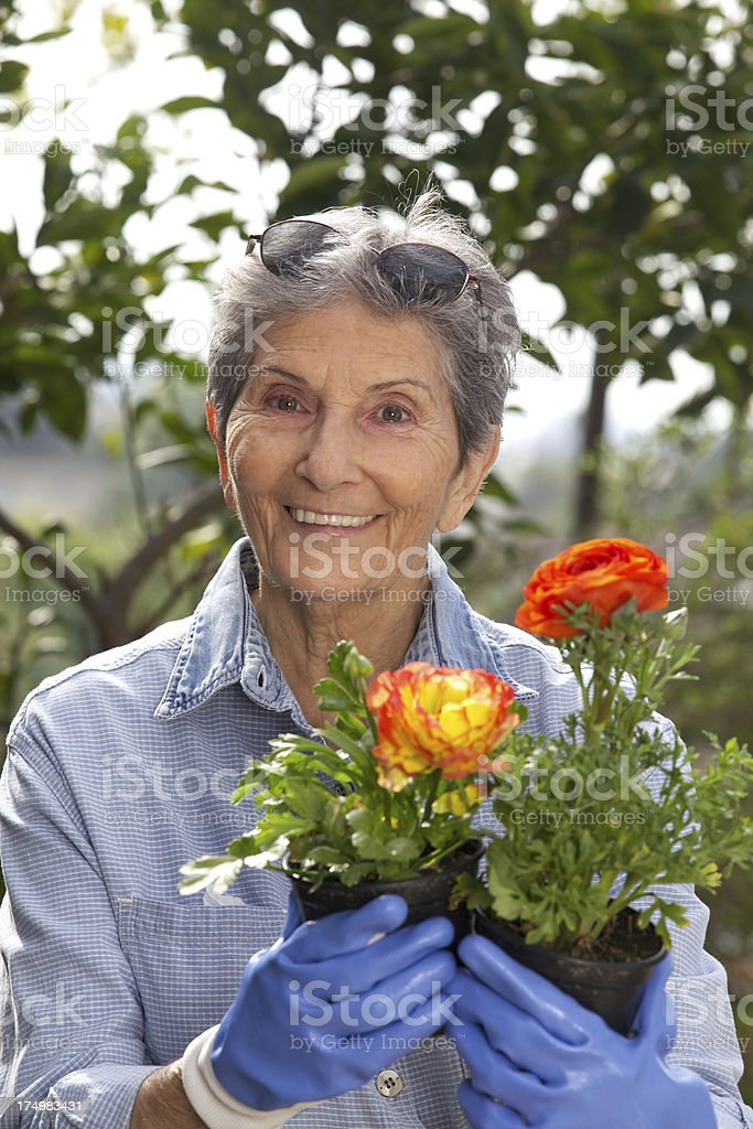 Happy Senior Woman Outside with Potted Flowers Gardening royalty-free stock photo