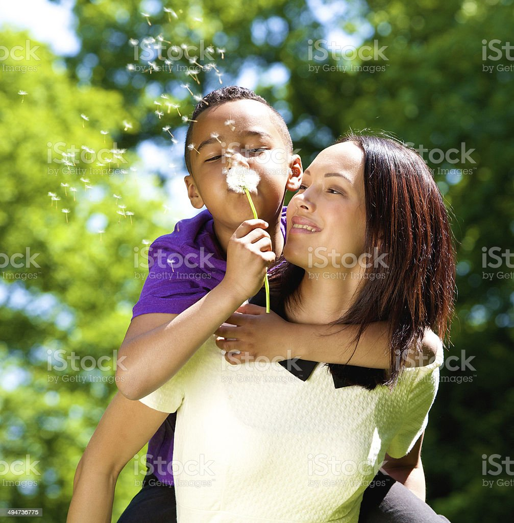 Happy single mother with son blowing dandelion stock photo