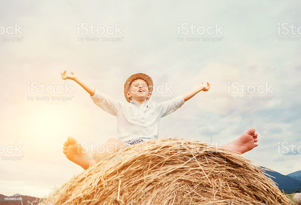 Happy smiling boy sits astride on the haystack stock photo