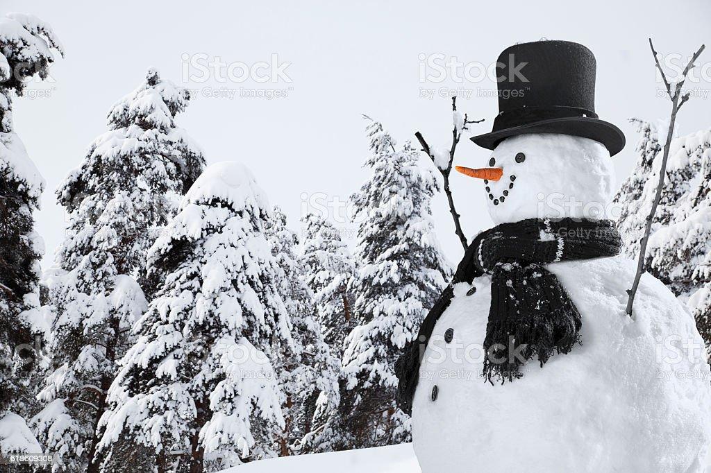 Happy Snowman in Christmas Season stock photo