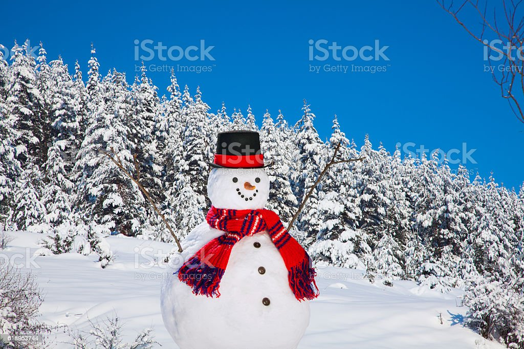 Happy Snowman in Christmas Season stock photo