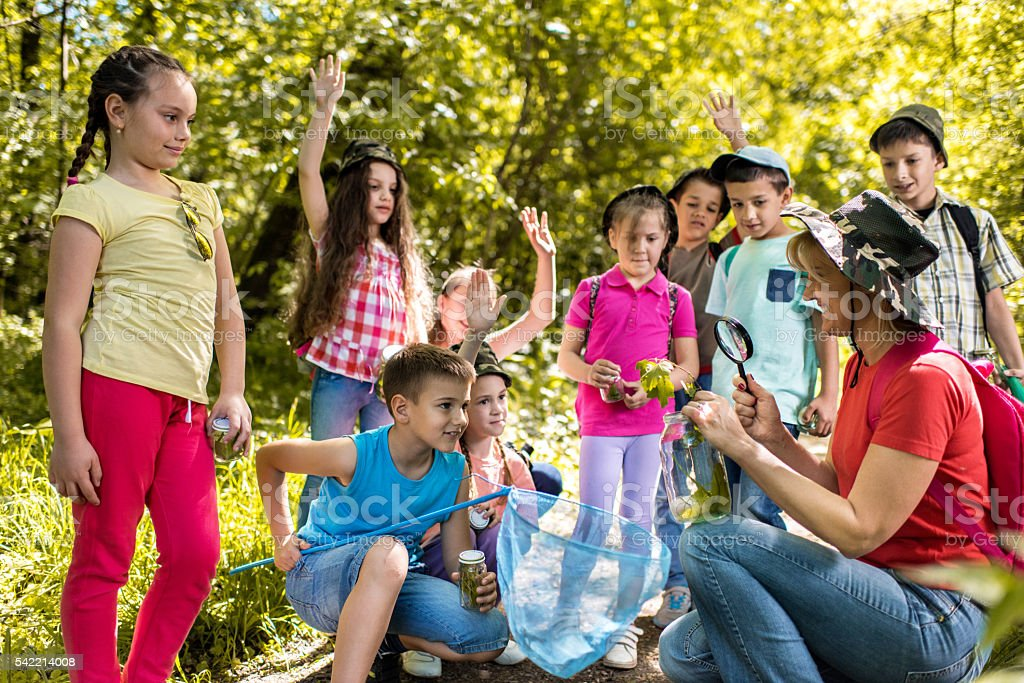 Happy teacher educating group of school children in the park. stock photo