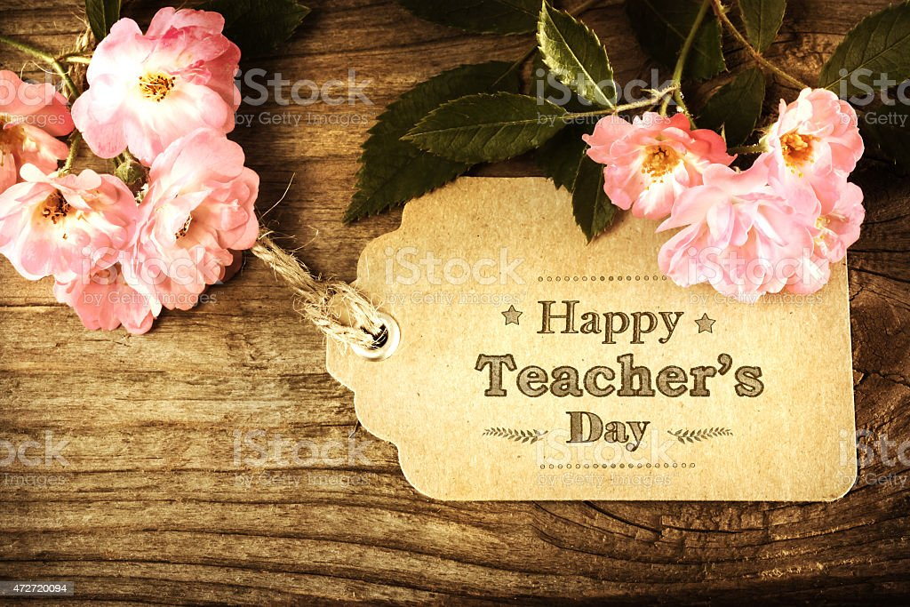 Happy Teachers Day message with pink roses stock photo