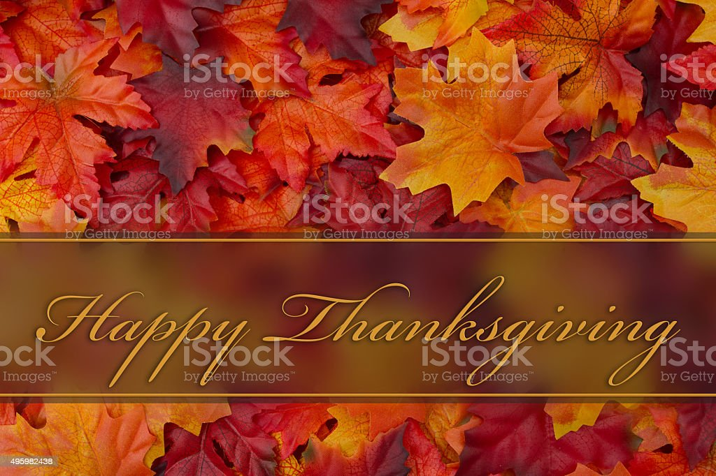 Happy Thanksgiving Greeting stock photo