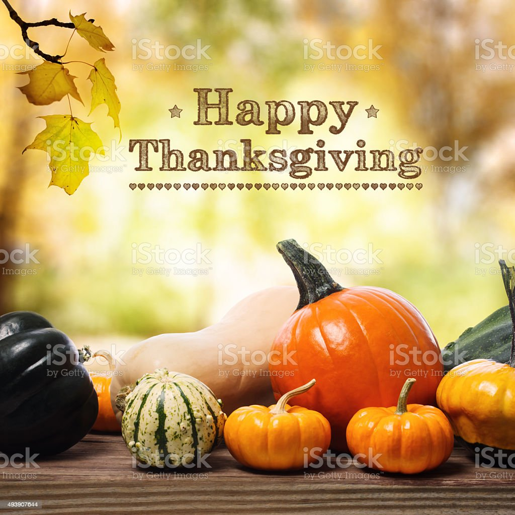 Happy Thanksgiving message with assorted pumpkins stock photo