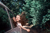 happy trip in nature with the car
