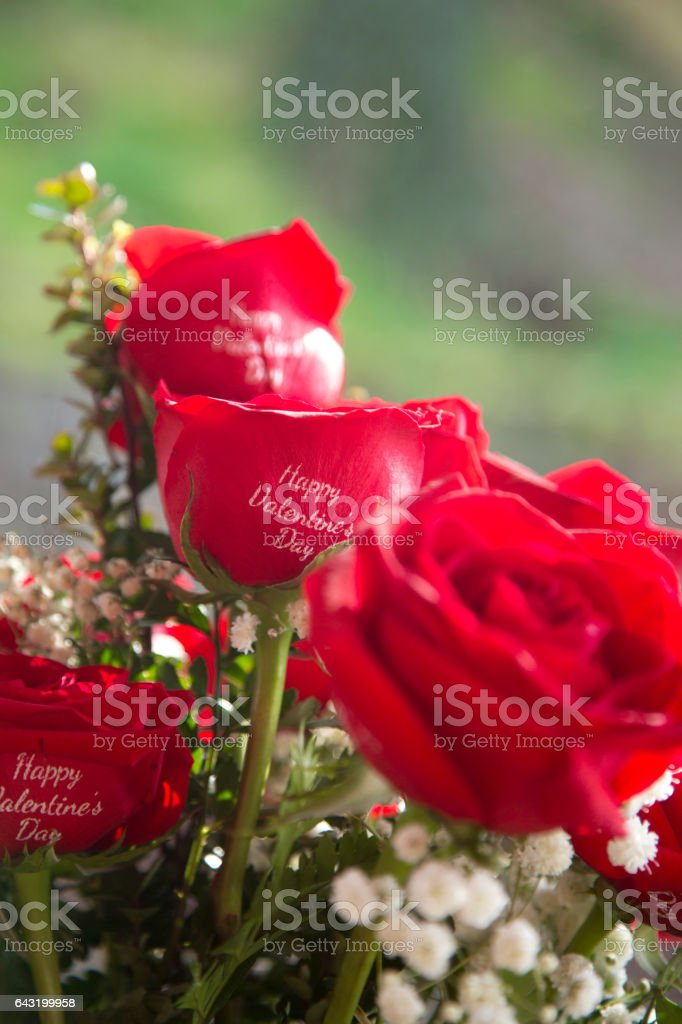 Happy Valentine's Day. stock photo
