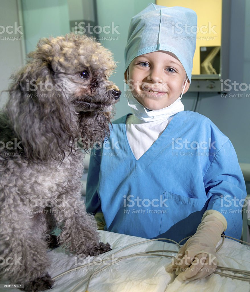 Happy vet royalty-free stock photo