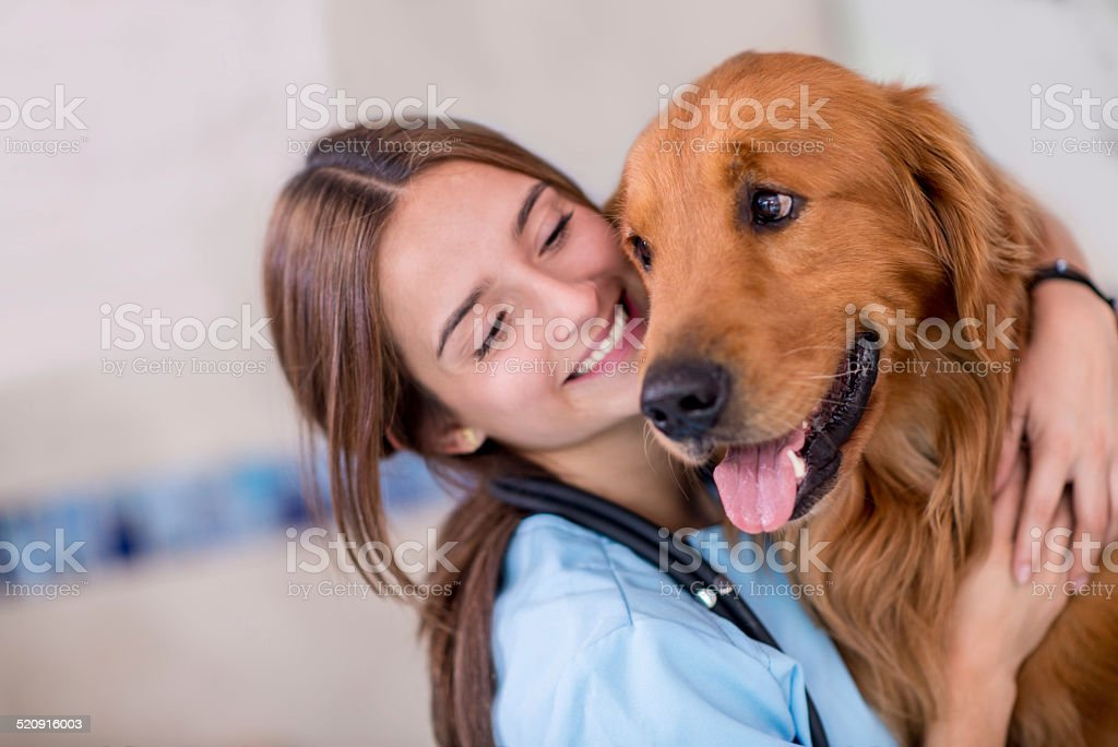 Happy vet with a dog stock photo