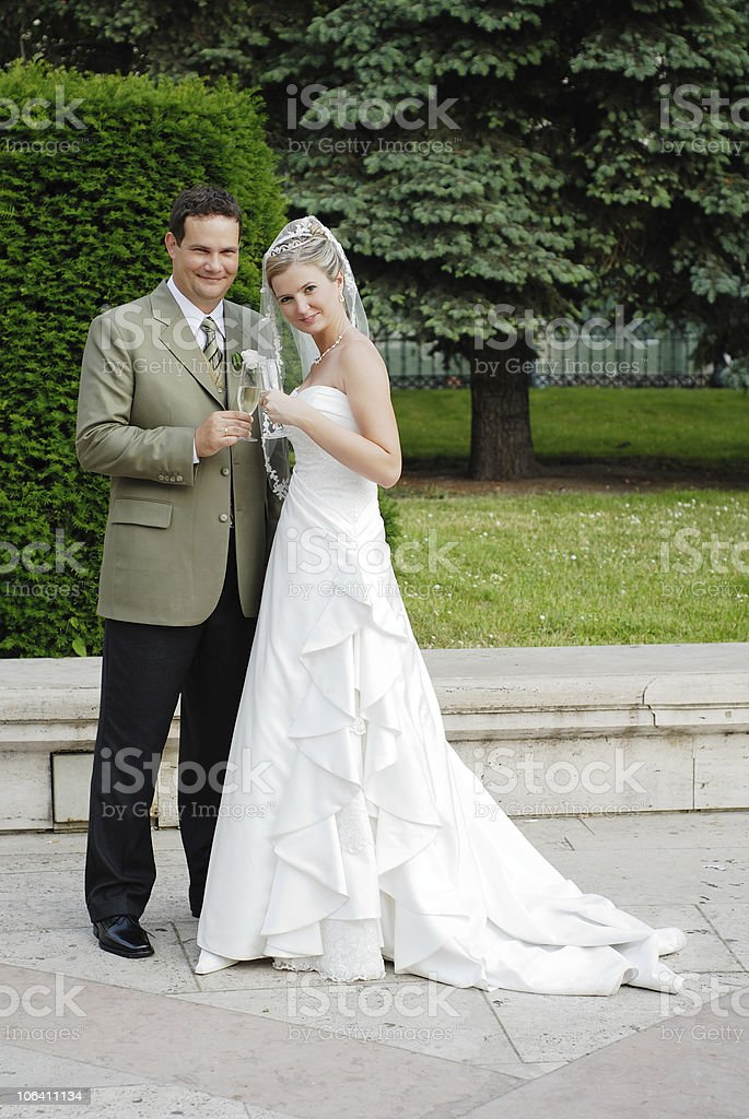 Happy wedding couple royalty-free stock photo
