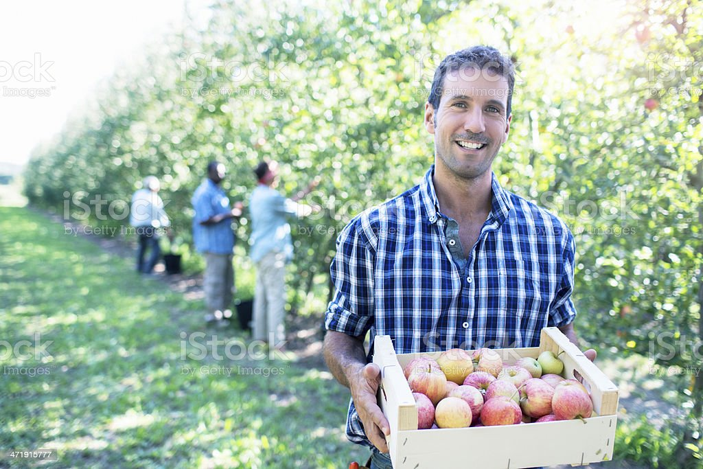 Happy with the harvesting stock photo