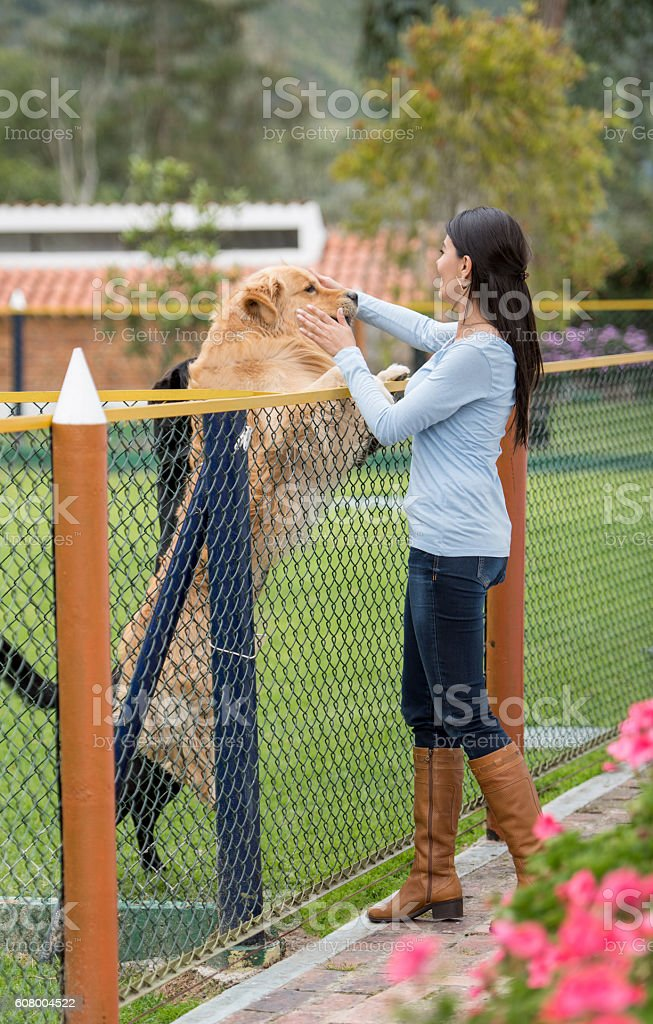 Happy woman adopting a dog stock photo