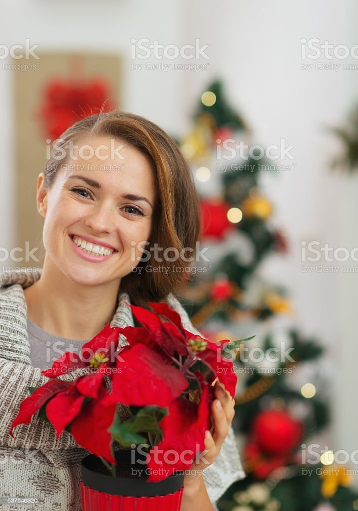 Happy woman holding  flower in front of christmas tree stock photo