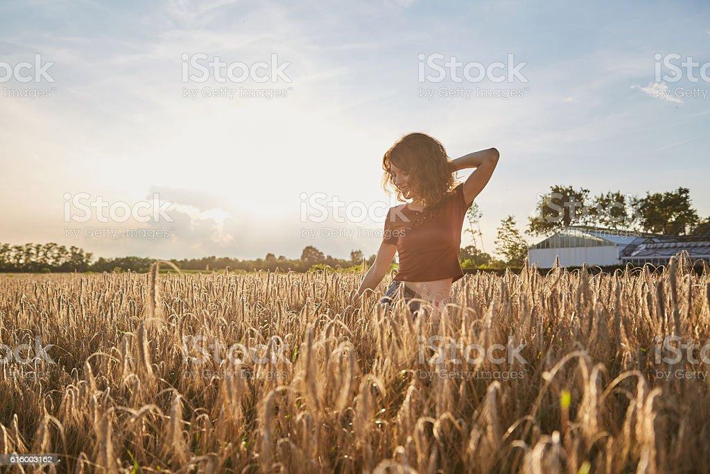 Happy woman in golden wheat stock photo