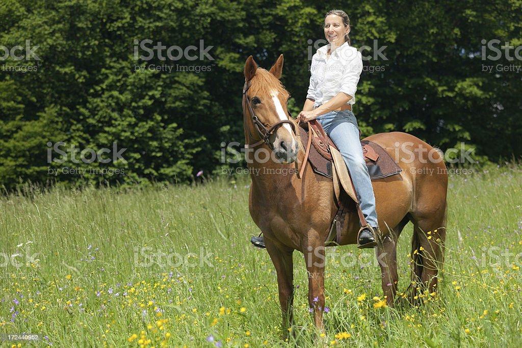 happy woman on horse stock photo