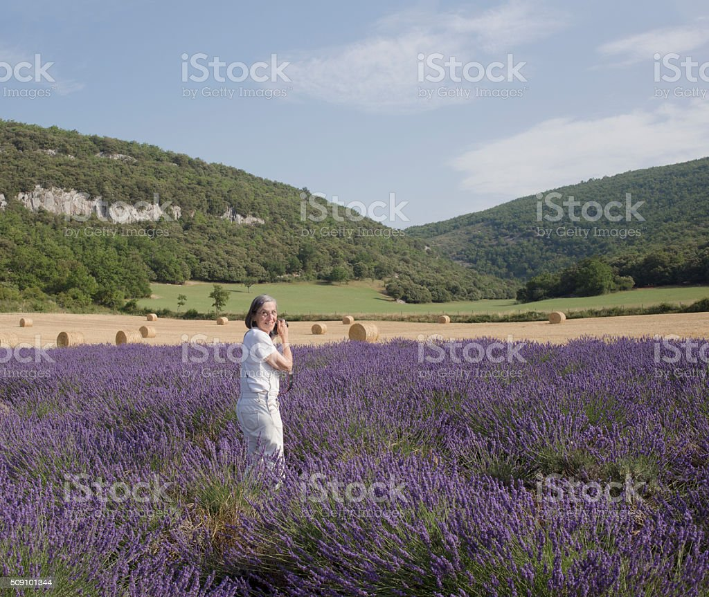 Happy woman, photographing in field of lavender stock photo