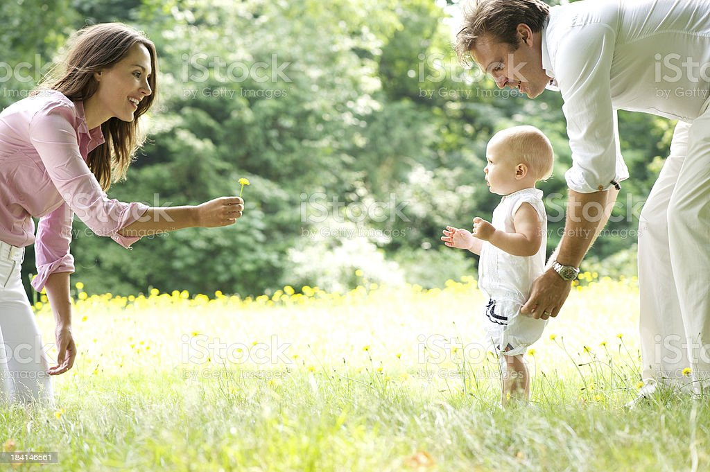 Happy young family teaching baby to walk stock photo