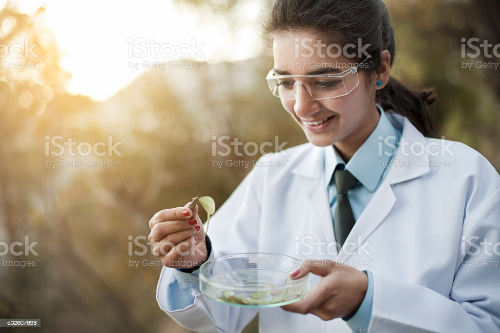 Happy young female Botanist collecting sample of leafs in nature. stock photo