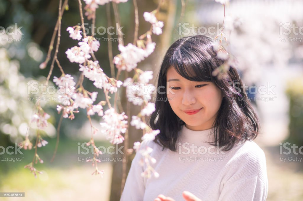 Happy young woman in cherry blossoms stock photo