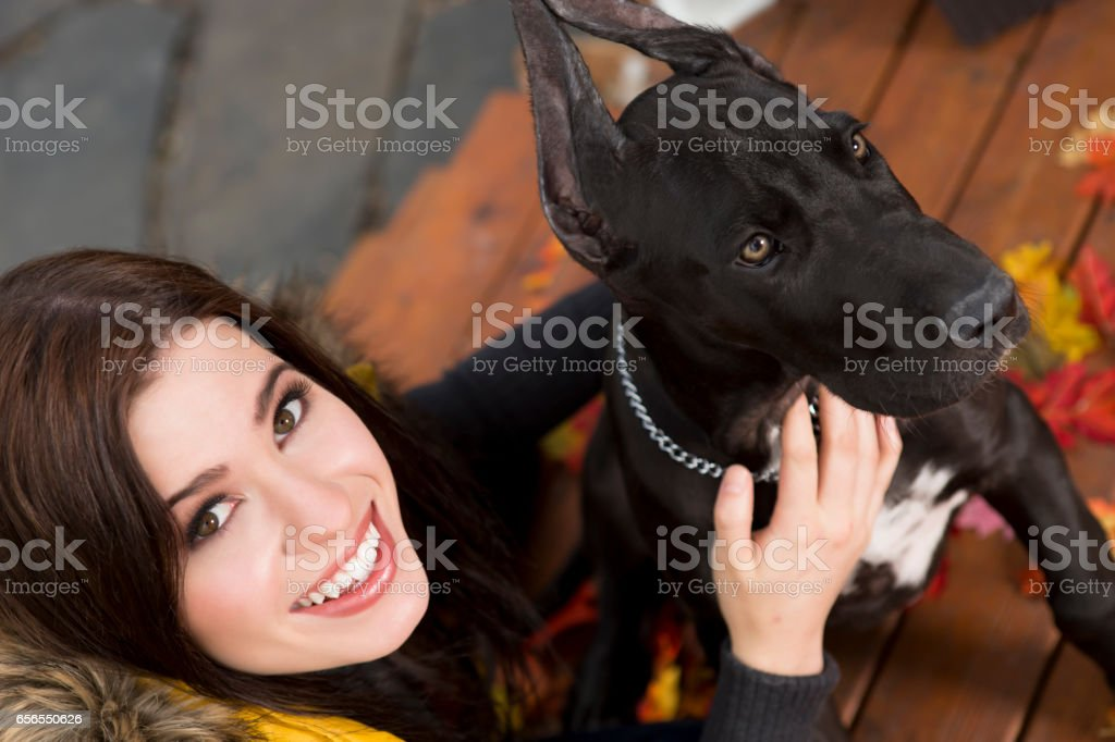 Happy young woman playing with dog stock photo