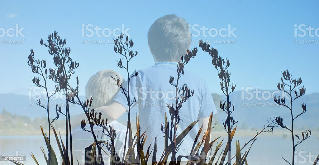 Harakeke (New Zealand Flax) Boys stock photo